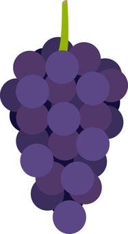 Grape grape