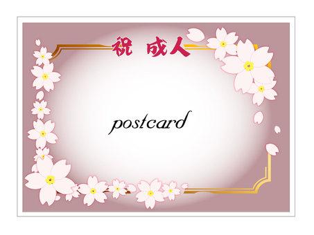 Postcard Sakura