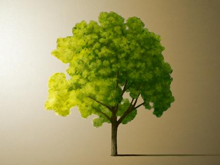 tree (side light)