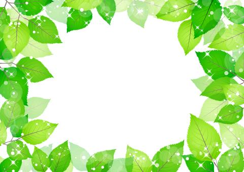 Fresh green material 230