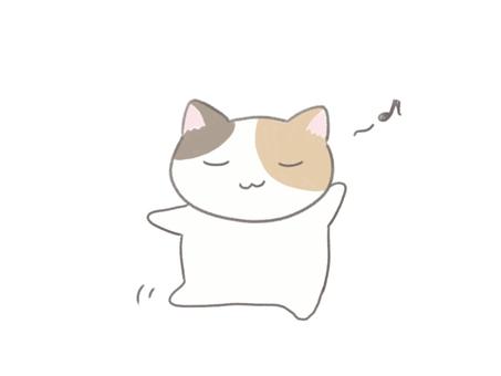 Calico cat dancing