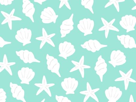 Shell Shell Full Screen Wallpaper