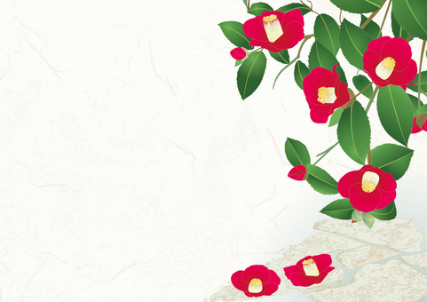 Camellia's garden _ Japanese paper background