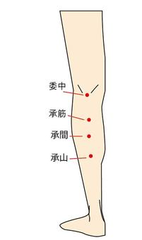 Points 5 - Backside of legs