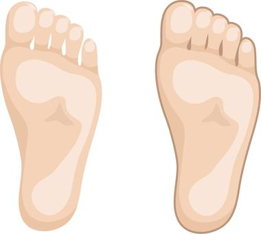 Set of soles with and without edges