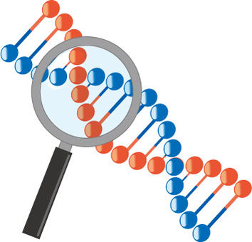 DNA inspection