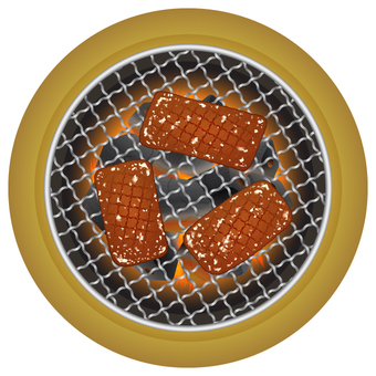 Grilled meat seen from above _ simple