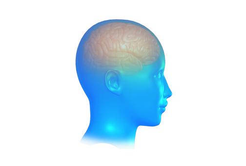 뇌의 CG 이미지 _003