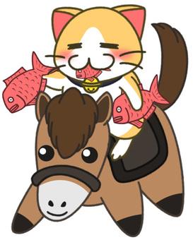 Dry cats (horses) 3