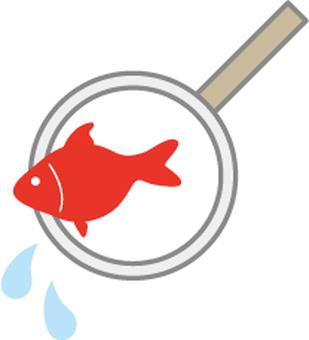 Goldfish scooping poi