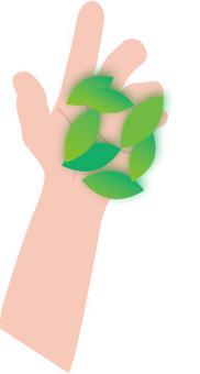 Left hand holding hands on leaves