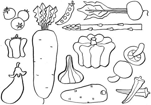 12 vegetables