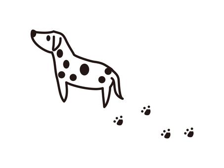 Wan chan / Dalmatian black