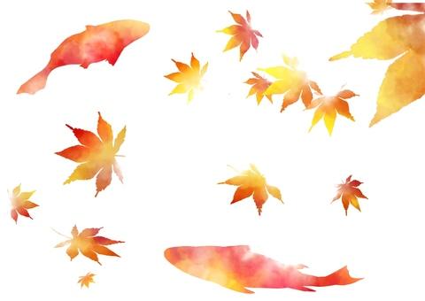 Autumn leaves and carp