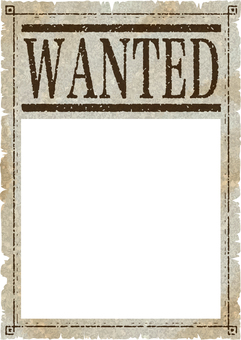 Wanted wanted frame