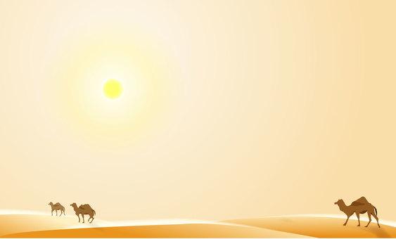 Summer desert 01