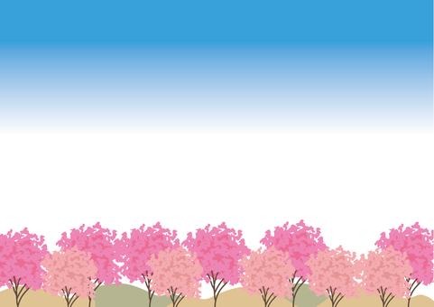 桜 wood landscape