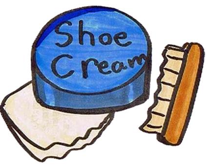 Shoe shine set