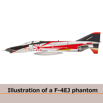 Airplane 3 F4EJ fighter