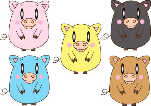 Pig of various colors
