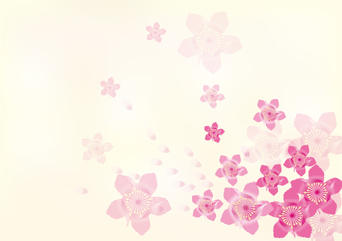복숭아 꽃 5
