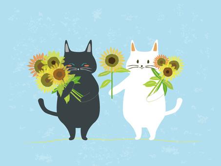 해바라기와 고양이 커플