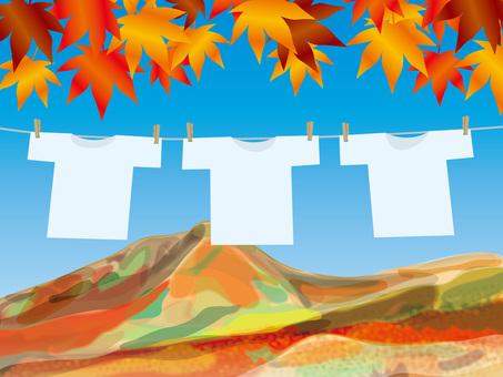 T 셔츠와 사계 (9) 단풍과 산