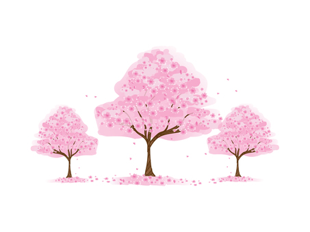 Three cherry trees