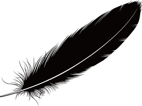 Bird feather silhouette