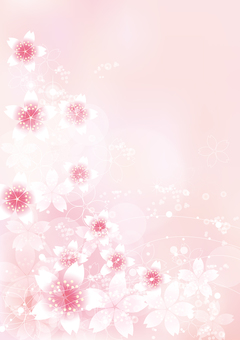 Sakura Twinkle 19