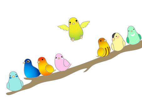 많은 작은 새들