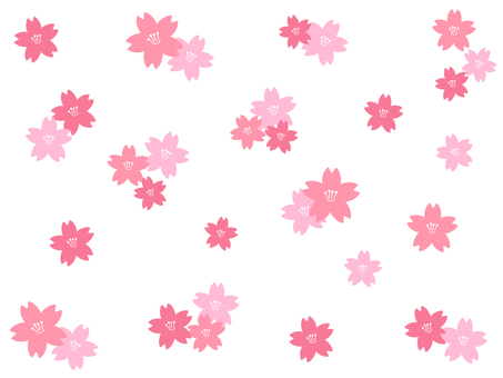 Cherry petal background material