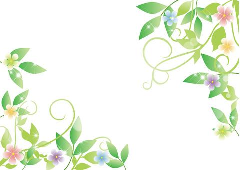 Fresh green and flower frame