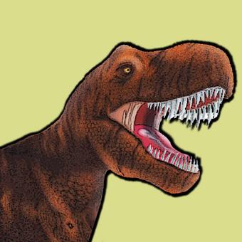 Dinosaur's face