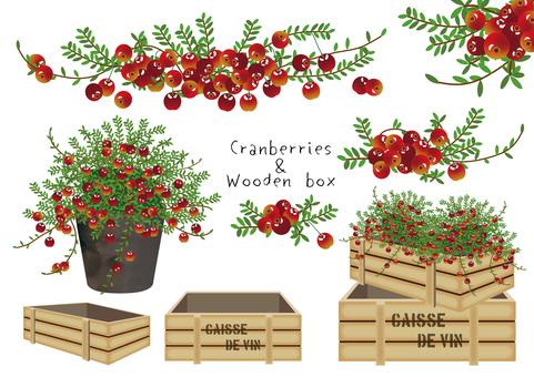 クランベリーと木箱 セット