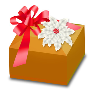Christmas gift Poinsettia ribbon