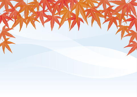 Autumn leaves background -4