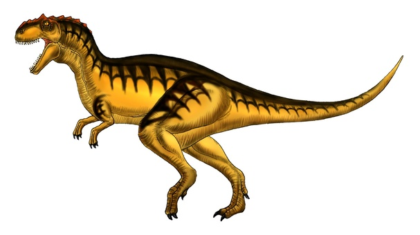 Metrico Acanthosaurus