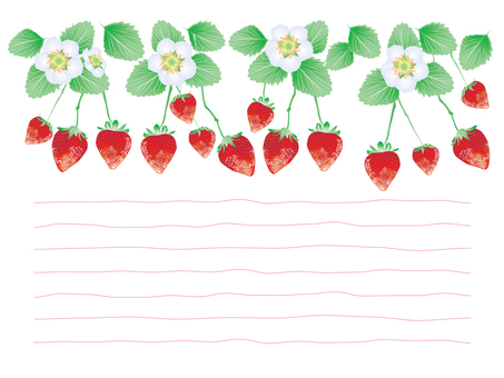딸기 카드