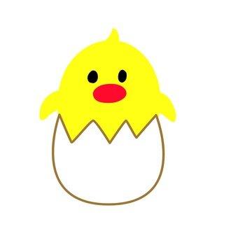 계란에 들어간 병아리