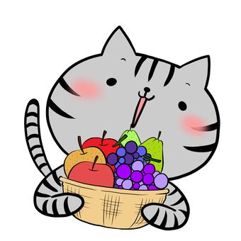 과일 바구니와 고양이