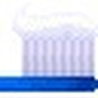 Toothbrush (blue)