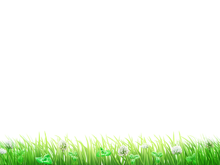 Background and wallpaper frame of grass and white nail grass