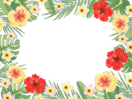 Tropical frame 2