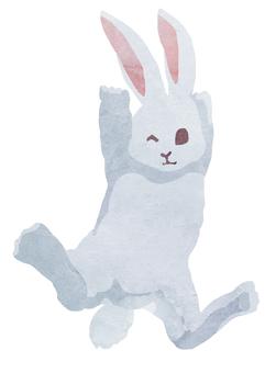 수채화 캐릭터 토끼 씨