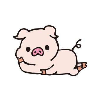 돼지 씨 (누워)