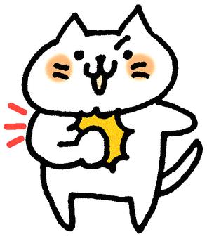 Self confident cat