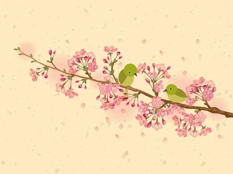 Sakura and Mejiro _ Washi