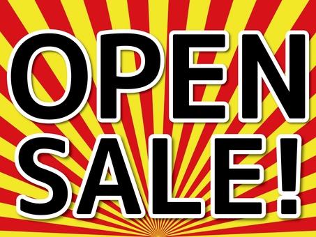Open Sale 2
