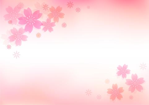 Sakura material 33